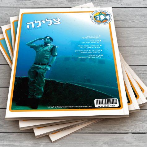 עיצוב מגזין